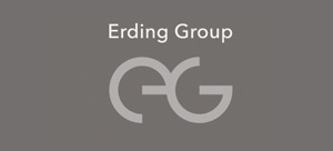 Лого «Erdin Group»